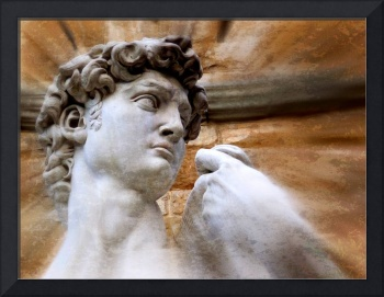 Michelangelo's David - Florence, Italy