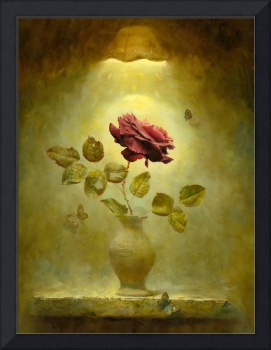 Dark Bordeau red rose in by gold the light
