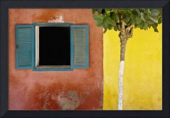 A Tree Outside A Colorful Building And A Window Wi