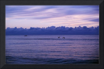 Tropical Seascape Dawn C5