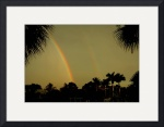 Florida Double Rainbow by Jacque Alameddine