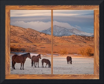 Rocky Mountain Horses Picture Window Frame Art