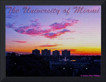 The University of Miami Sunset