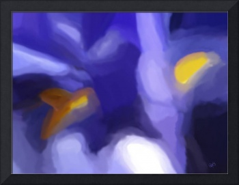 Abstract Iris Colors