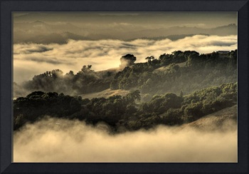 Sonoma Mountain Above the Fog