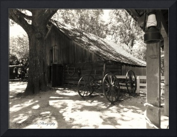 Barnyard At Stone Mountain Plantation