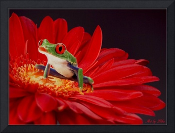 little frog on the red flower