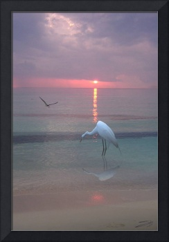 Egret Fishing at Sunset