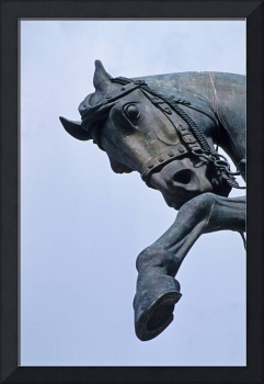 Horse Statue Detail - Rome (Italy)