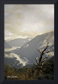 New Zealand - Overlooking the Doubtful Sounds