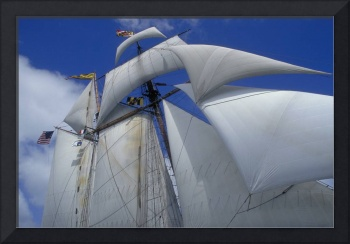 Pride of Baltimore ll under sail