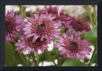 MUMS IN PINK