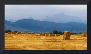 Colorado Agriculture Farming Panorama View Pt 1