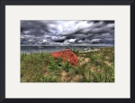 Red Dory on Shore Rd (HDR) by Christopher Seufert