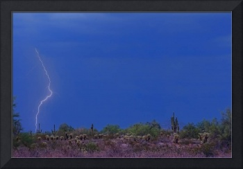 Lightning Bolt Strike in The Desert