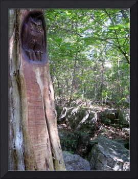 Tree Carving of owl with rock landscape