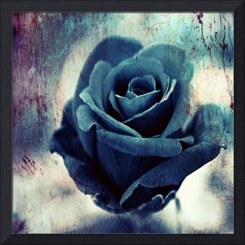 Blue Rose of Oblivion