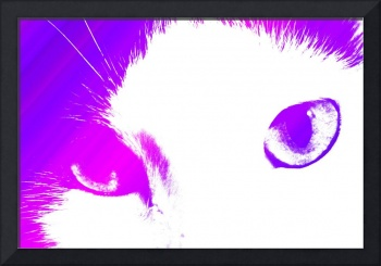 I Can See You Cat (Pink and Purple)