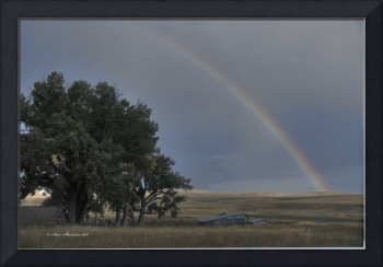 Rainbow an TA Ranch
