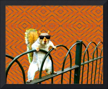 Squirrel with Shades