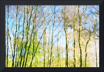 Tree Reflections Abstract