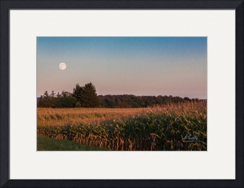 Harvest Moon by D. Brent Walton
