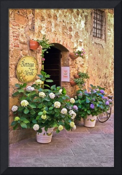 Flowers-shades of yellow green,violet,Siena,Italy