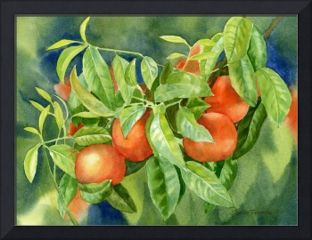 Tangerines with Background 2