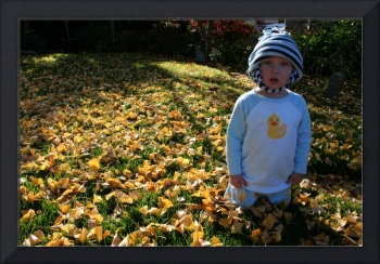 Evan in the fall