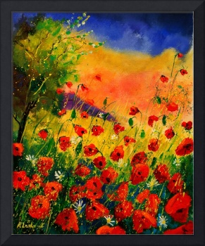 red poppies 45