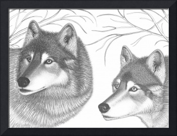 'Companions In The Wild'(Wolves)
