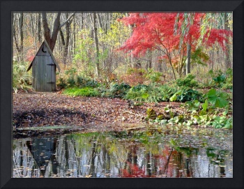 Outhouse at the pond