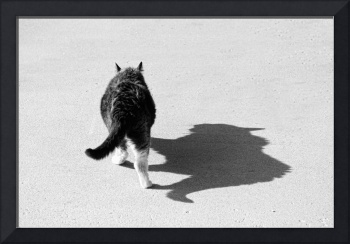Big Cat Ferocious Shadow Monochrome