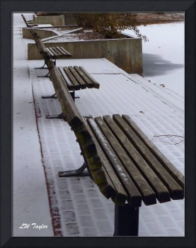 Deserted Benches