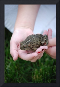 Found a toad