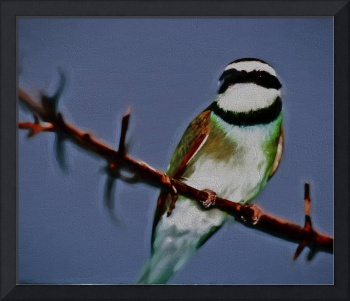 Green African Bee Eater