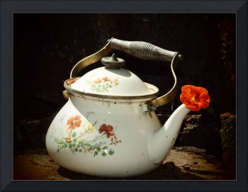 Antique Tea Pot pinholePoPArt