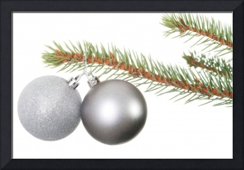 Two silver christmas balls hanging on a fir. Isola