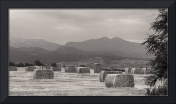 Colorado Farming Panorama View in BW Pt 2