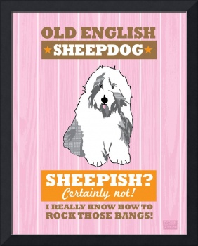Old English Sheepdog Pink/Orange