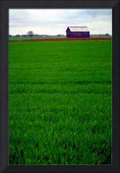 Barn at the End of the Field