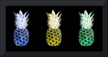 Triptych 14U Artistic Pineapple Blue Yellow Green