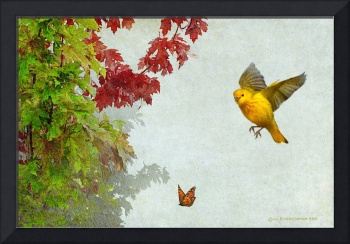 yard maple on white with bird and butterfly