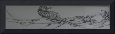pen and ink seahorse