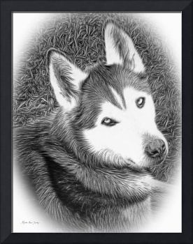 Expressive Siberian Husky Mixed Media A4617