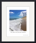 Cape Cod National Seashore Poster Print by Christopher Seufert