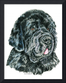 Black Newfoundland Newfie Dog