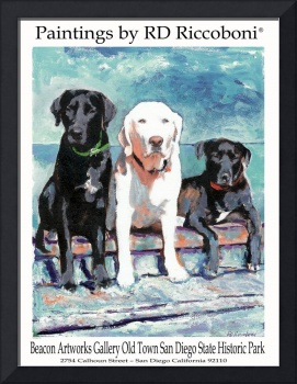 Poster of Dogs - Labradors