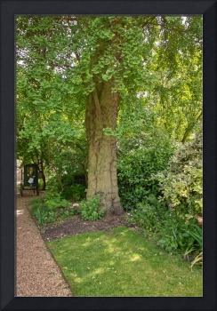 In the Physic Garden, Chelsea 11