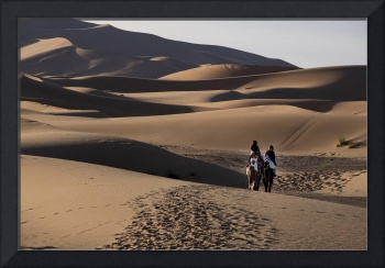 Two Camels in Sahara Sand Dunes